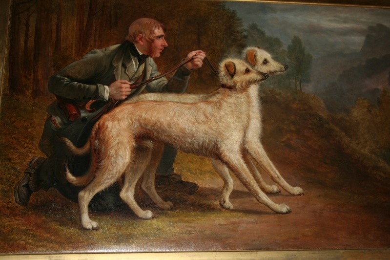 Fort Worth Museum Displays Dog-Themed Art Spanning 19th