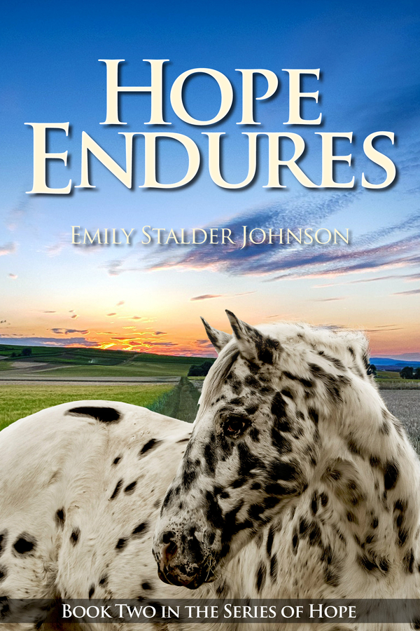 """Author Emily Stalder Johnson Introduces the Release of Book Two in the 'Series of Hope', """"Hope Endures"""""""