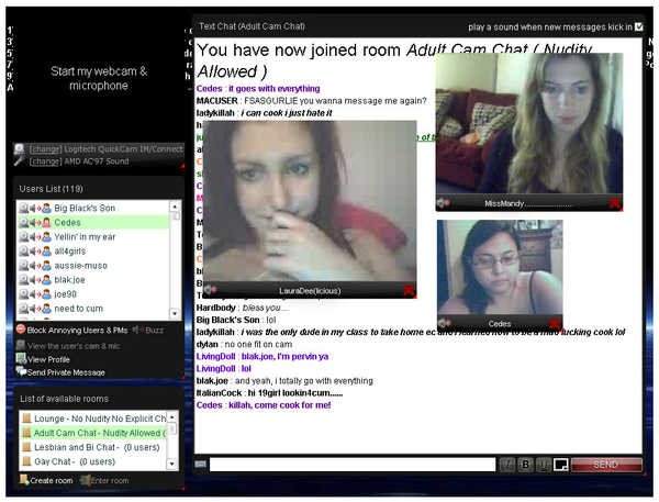 Adult Webcam Chat Rooms ...