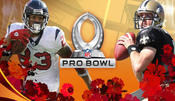 <strong>2011 NFL Pro Bowl Live Stream Online</strong>