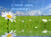 <strong>nfsMummy is a free screensaver with a nature background and &quot;I love you, mummy!&quot; words.</strong>