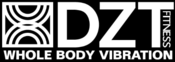 <strong>The DZT LOGO</strong>