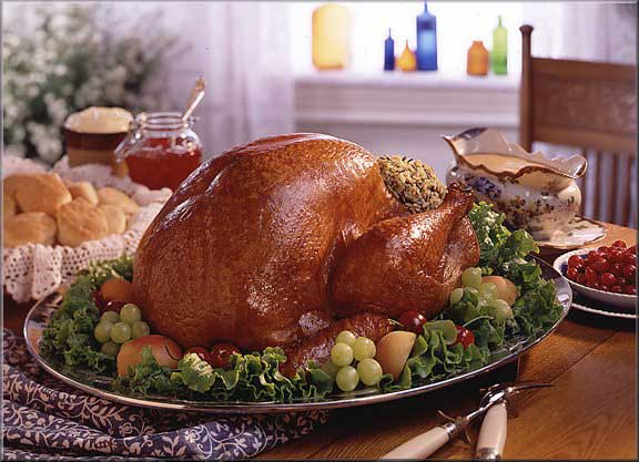 press release distribution 0243396 45978 Doctors Suggest Prepare the Turkey with Less Salt this Thanksgiving Photo