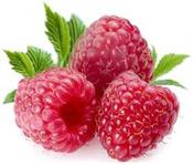 <strong>The Raspberry Ketone fruit</strong>