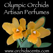 <strong>Company name with orchid photo</strong>