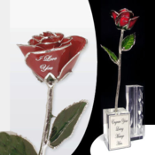<strong>This silver trimmed rose can be personalized with your message to make a great gift and lifetime keepsake. Visit the Gold Rose Collection at Arttowngifts.com.</strong>