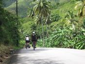 <strong>Wow, cycling through the lush foliage of The tropical Islands can't be beat.</strong>