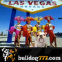 Winner of 'Master of Bulldog777.com' Las Vegas Vacation Prize Unable to Travel So Takes Cash Equivalent