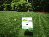 <strong>Get a green healthy lawn using TLC Lawn Care Winston Salem NC</strong>