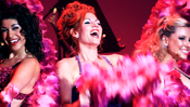 <strong>Live photograph of Quinn Lemley star of Burlesque to Broadway</strong>