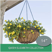 <strong>This hanging basket from the Queen Elizabeth Collection of hanging baskets will inspire a Downton Abbey look in your backyard.</strong>