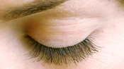 <strong>Party Lashes ~ www.VideoShelf.com</strong>