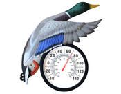 <strong>Duck - Mallard Thermometer Unit in Frame - 6&quot; Diameter</strong>