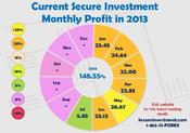 <strong>A summary of Profit in 2013</strong>