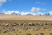 <strong>The spectacular scenery in western Tibet</strong>