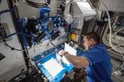 <strong>NASA astronaut Chris Cassidy, Expedition 36 flight engineer, works on the Capillary Flow Experiment aboard the International Space Station on May 22, 2013. Image Credit: NASA</strong>