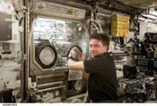 <strong>NASA astronaut Michael Foale performs an inspection of the Microgravity Science Glovebox (MSG) during Expedition 8 aboard the International Space Station. Image Credit: NASA</strong>