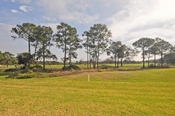 <strong>Santa Luz offers luxurious Florida golf course condos.</strong>