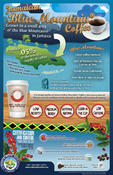 <strong>Jamaica Coffee Infographic</strong>
