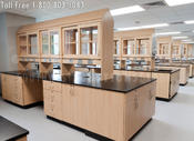 <strong>Laboratory Furniture, Stainless Steel Cabinets and Workstations</strong>