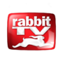 Rabbit TV Taps Former Netscape AOL, RR Donnelly, Cenveo CFO