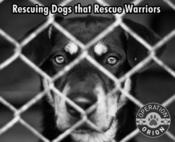 <strong>Operation Orion Rescues Dogs that Rescues Warriors</strong>