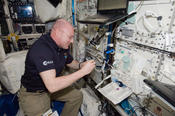 <strong>European Space Agency astronaut Andre Kuipers prepares vials aboard the International Space Station for venous blood sample draws during an immune system investigation. Photo credit: NASA</strong>