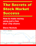 """The Secrets of Stock Market Success"" Now Available for Kindle"