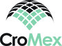 CroMex Inc.: What's More Important, Mastery or Success?