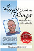 <strong>A Flight Without Wings cover</strong>