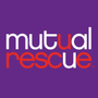 Mutual Rescue Highlights Bonds of People and Pets