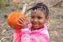 Delphi Boston Students Have Fun at the Pumpkin Patch