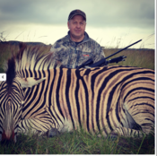 <strong>Zebra hunting in Africa</strong>