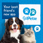 GoPetie, The App that Helps Pet Owners Take Care of their Pets