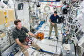 <strong>The Synchronized Position Hold, Engage, Reorient, and Experimental Satellites (SPHERES) facility celebrated 10 years of science aboard the space station in May.</strong>