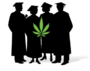 Introducing A Brand New $5,000 College Scholarship and Paid Internship Program for Students Looking to Enter the Cannabis Industry