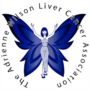 Blue Faery Grants Liver Cancer Research Award to Dr. Amit Singal