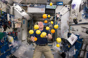 <strong>Retired astronaut Scott Kelly opens a bag of assorted fruit (oranges, lemons, grapefruits) in the Node 2 module after being unpacked from the Kounotori H-II Transfer Vehicle 5 (HTV-5).</strong>