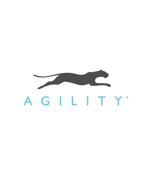 Agility Inc. Turns 15