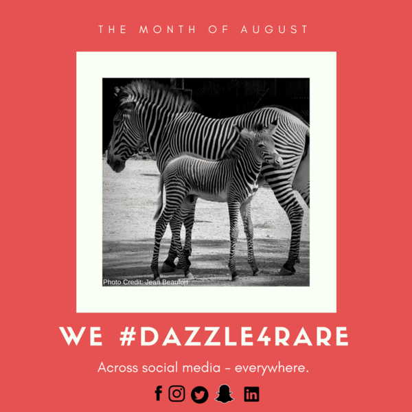 Small Non-Profit Will #Dazzle4Rare with Organizations and Advocates from Around-the-World to Promote Wider Rare Disease Awareness