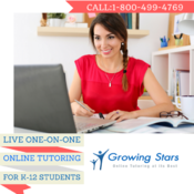 <strong>One-on-one Online tutoring</strong>