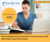 <strong>Online tutoring for American students</strong>