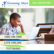 <strong>One-on-one live online tutoring for k-12 students</strong>
