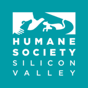 Humane Society Silicon Valley (HSSV) has earned accreditation through the Better Business Bureau Wise Giving Alliance, meeting their 20 standards for charity accountability.