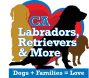 <strong>CA Labradors, Retrievers & More</strong>
