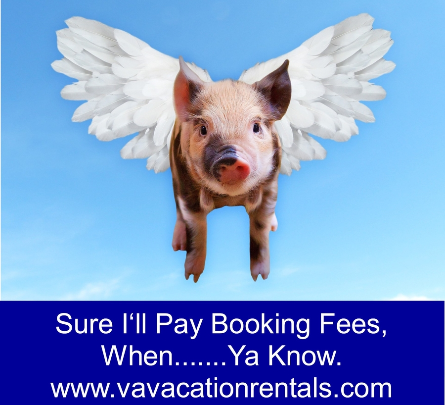 February 7th is National Book Direct Day!   Book Direct with Trusted Vacation Homeowners and Save Money!