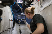 <strong>NASA astronaut Kate Rubins sets up the Eli Lilly - Hard to Wet Surfaces Sample Module by injecting buffer solutions into the sample vials then mixing all six sample vials inside the Sample Module.</strong>