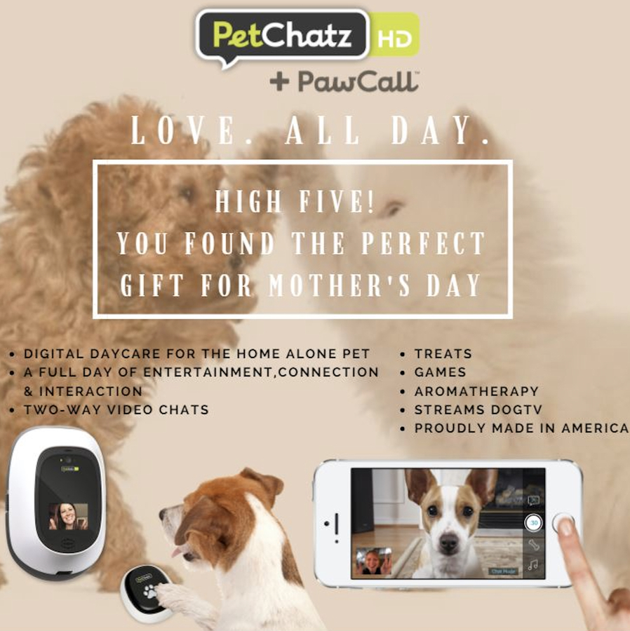 PetChatz Partners with Amazon's Alexa Raising the Bar in the World of Pet Technology