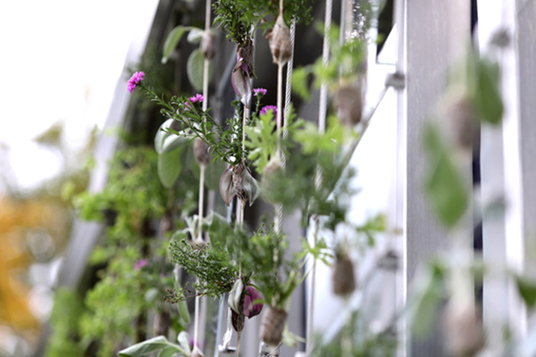 OPVIUS Presents First Self-tending Vertical Garden