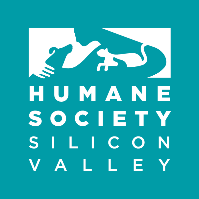 "Humane Society Silicon Valley Announces Successful Completion of Their ""Paint a Better Future"" Campaign"
